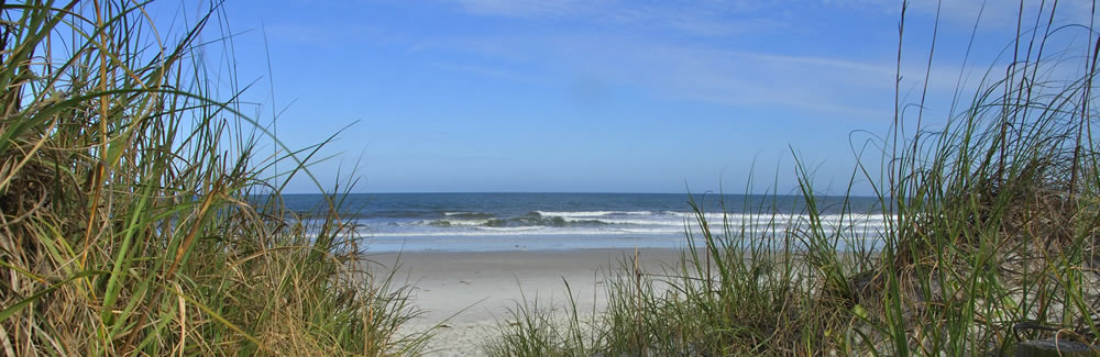 Amelia island beaches guide to fernandina beach summer beach amelia island beaches nvjuhfo Gallery